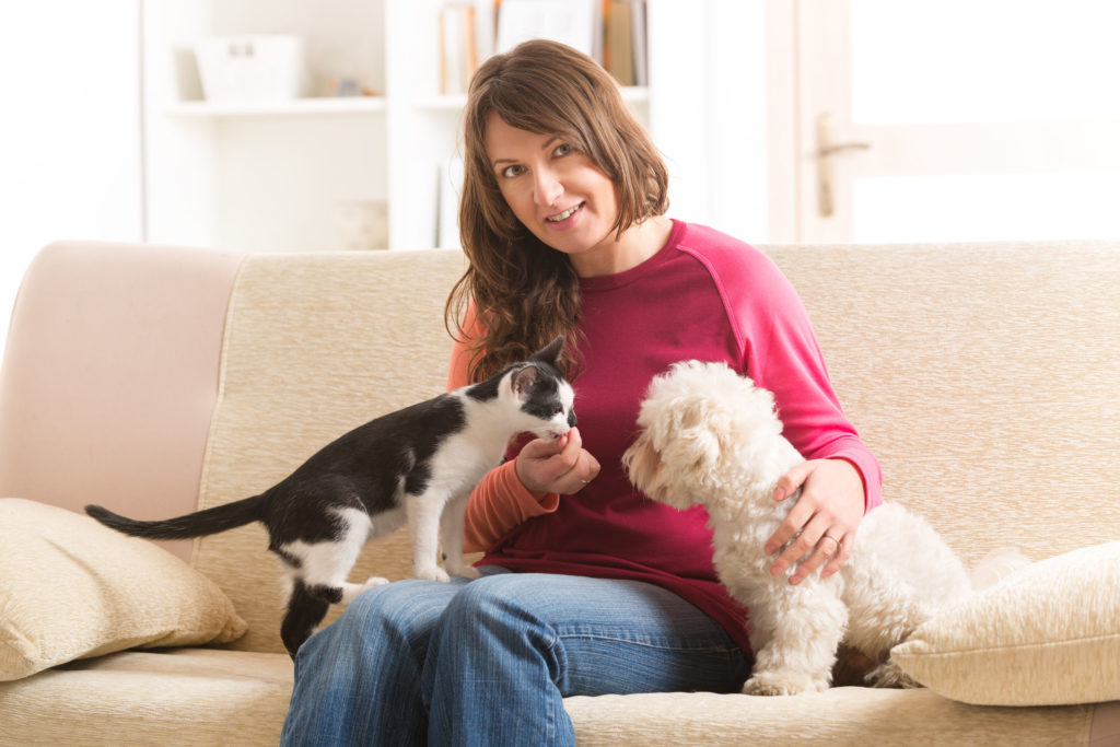 little maltese dog and black and white cat sitting with owner on sofa in an apartment